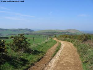 The path near Pyecombe