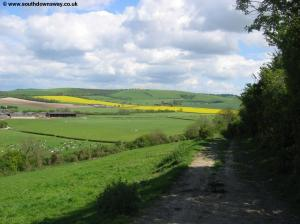 View near Whitewool Farm